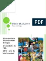 Biomas Brasileiros Aula Yanna