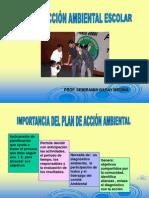 PONENCIA PLAN DE ACCIÓN AMBIETAL-SEMIRAMIS