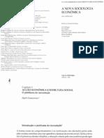 (Granovetter, Mark) Cap I Livro a Nova Sociologia Economica R Marques J Peixoto 2003