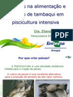Cuidados-na-alimentação-e-nutrição-de-tambaqui-em-piscicultura-intensiva