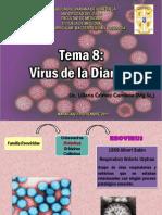 Tema 8 Virus de La Diarrea