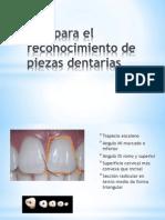Tips Para El Reconocimiento de Piezas Dentarias