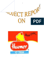 65104618 Havmor Ice Creams Bba Mba Project Report