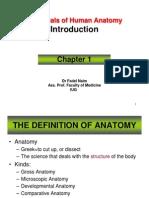 Essentials of Human Anatomy 1 (Introduction)