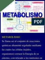 06 Metabolismo y Vitaminas-13