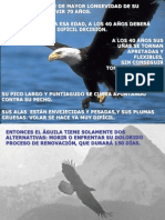 Aguila.pps