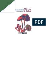 [Psilocybin de]Psychoaktive Pilze Bestimmungskarten Gartz