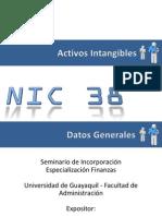 Activos Intangibles Nic