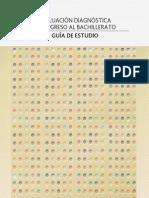 1 Guia Eval Diag Ingreso 2013-2014 Backup