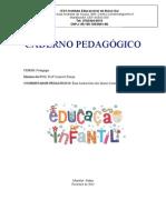 CADERNO PEDAGÓGICO ED INFANTIL 2014