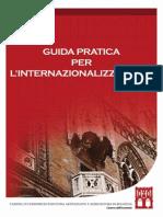 Guida All'Internazionalizzazione