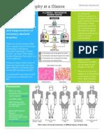 Muscular Dystrophy Fact Sheet