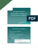 Clase Pseudomonas AeruginosaDraMGomez (1)