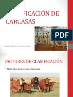 CLASIFICACIÓN DE CARCASAS