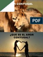 Amor Conyugal (2)