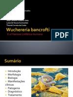Wuchereria bancrofti (3) (1).pptx