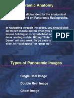 anatomie panoramica