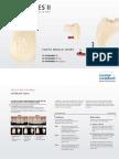 SR Phonares II Tooth Mould Chart
