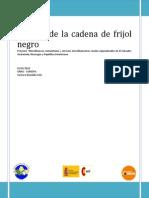 Informe Borrador Cadena Del Frijol Negro