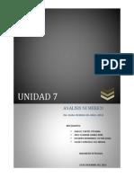 analisis unida 7