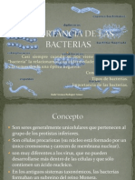 Importancia de Las Bacterias