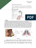 PBL Skenario 1 Blok Respirasi
