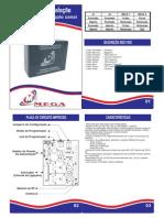 Manual Receptor Duplo Canal Mega