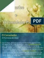 Kardec e o Consolador Prometido SC