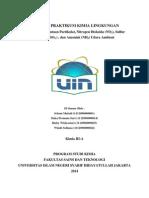 Makalah Praktikum Kimia Lingkungan Analisa Udara Ambient  .docx