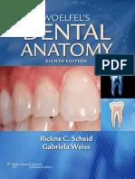 Woelfels Dental Anatomy - Its Relev. to Dentistry 8th Ed. - R. Scheid, G. Weiss