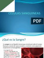 CELULAS SANGUINEAS