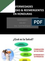 Enfermedades Desatendidas y Reemergentes en Honduras