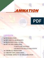 Inflamamtion - Final New