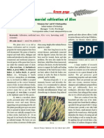 Commercial Cultivation of Aloe