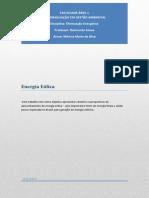 energiaelica-mnicasilva-130711080747-phpapp02