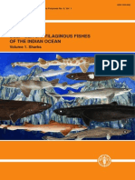 Deep–sea Cartilaginous Fishes of the Indian Ocean, Vol. 1 – Sharks