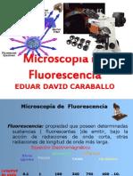 EDUAR CARABALLO MICROSCOPÍA DE FLUORESCENCIA TERMINADO