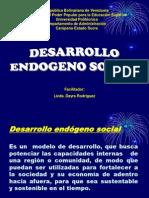 DESARROLLO ENDÓGENO II Copy