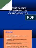 Vias Metabolicas