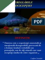 Durerea PP7