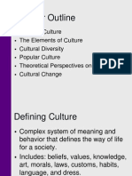 culture and society.ppt