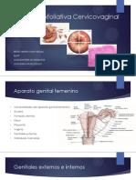 Citología exfoliativa Cervicovaginal