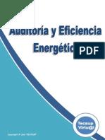 Texto1Auditoria y Eficiencia Energetica