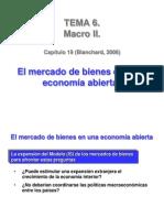 t6 Mercado de Bienes Economia Abierta