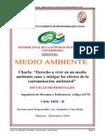 Informefinalmedioambiente2010 II 101229002439 Phpapp01