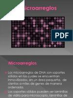 MICROARREGLOS.pptx