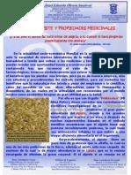 LECHE DE ALPISTE Y PROPIEDADES MEDICINALES.pdf