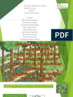 Agroforesteria en Tuxtla, Ver.