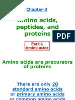 Amino Acids for Web