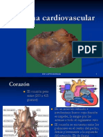 Sistema_cardiovascular Power Point
